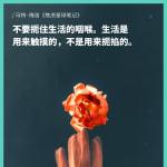 fangzhang